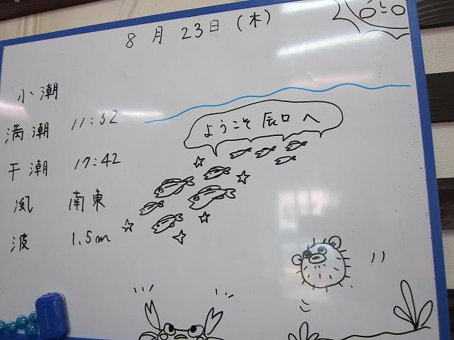 体験ダイビング@辰口です