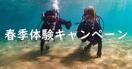 【2020年限定】春の体験ダイビングキャンペーン