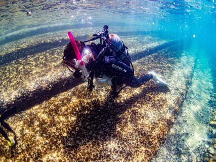 初めての水中世界に叫ばずにはいられない!