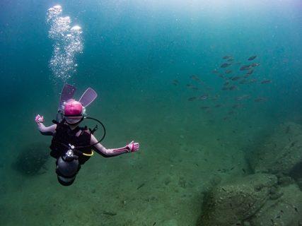特定の魚と遭遇率が高い女性メンバー