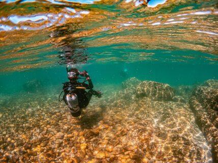 水中写真講座、透明度に関係ない撮影方法